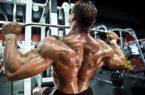 allenamento per schiena a V