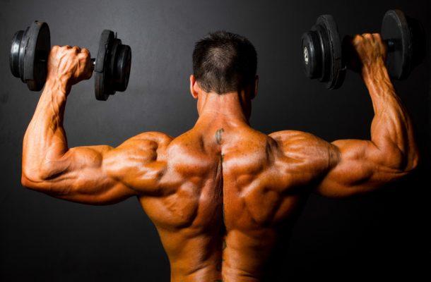 Proteine aminoacidi palestra massa e recupero muscolare health